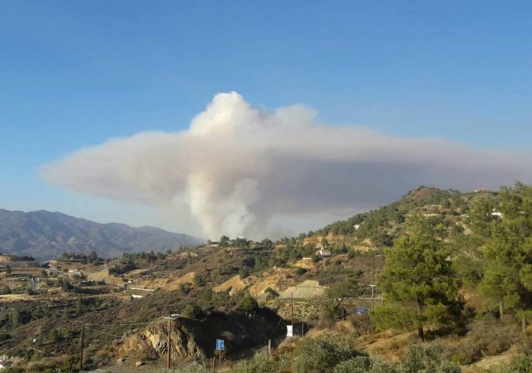 Σε καλό δρόμο η κατάσβεση της πυρκαγιάς στην περιοχή Οράς (Update)
