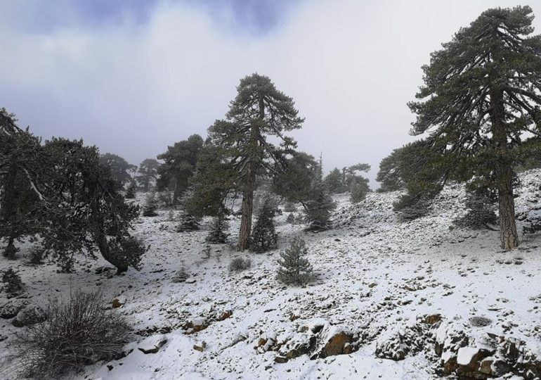 Εικόνες και βίντεο από το χιονισμένο Τρόοδος 27/12/2018