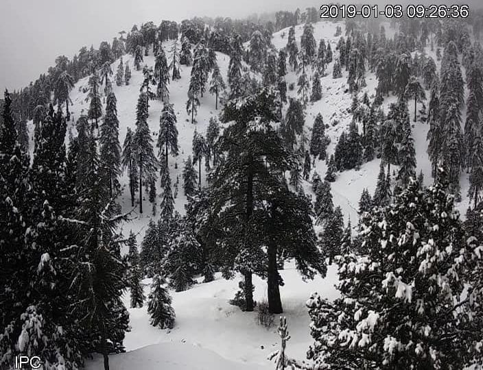 Αρκετά ορεινά θα ντυθούν στα λευκά απόψε - Στους -5 θα πέσει η θερμοκρασία στο Τρόοδος ❄⛄?