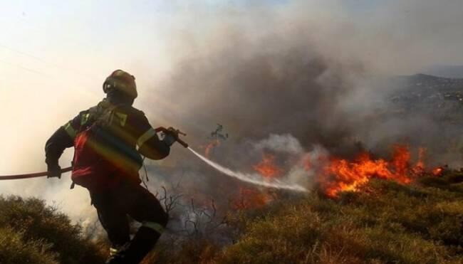 Πυρκαγιά ξέσπασε στην Αγία Νάπα - Καθοδόν εναέρια μέσα (Update 1)