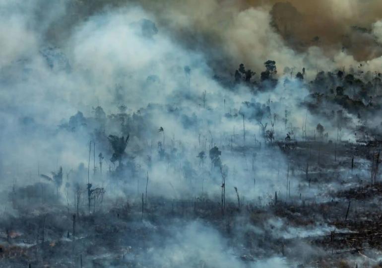 """Μύθοι και αλήθειες όσον αφορά τον Αμαζόνιο που """"φλέγεται"""""""