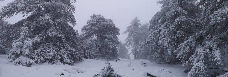 Συνεχίζει ο άστατος καιρός με βροχές, καταιγίδες και χιόνια για ακόμη 36 ώρες (Εικόνες/βίντεο)