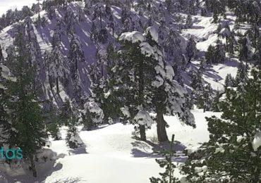 Κατάσταση οδικού δικτύου και ύψος χιονιού στο Τρόοδος- Ενημέρωση ώρα (12:15)
