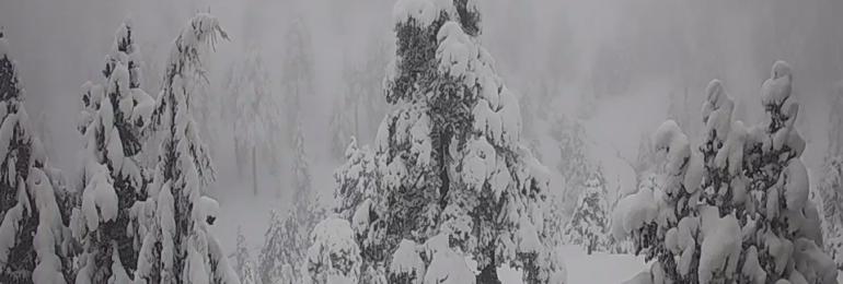 Κατάσταση οδικού δικτύου και ύψος χιονιού στο Τρόοδος- Ενημέρωση ώρα (13:45)