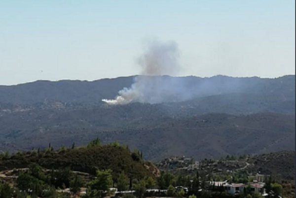 Πυρκαγιά μεταξύ των χωριών Σανίδας/Βάσας (Βίντεο) - Κινδύνευσαν κατοικίες