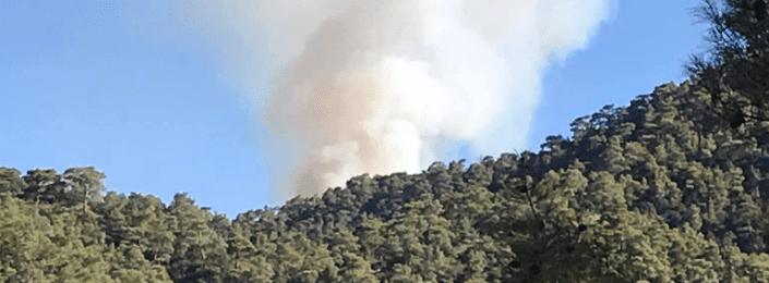 Έκτακτο - Μεγάλη δασική πυρκαγιά στην Κυπερούντα (Βίντεο)